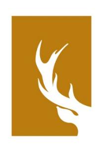 Łańsk sygnet logo wersja uproszczona